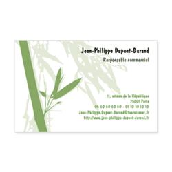 294-bambou-vert